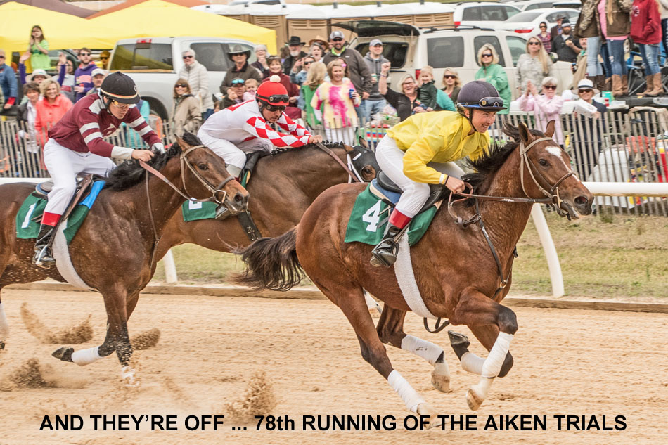 aiken trials